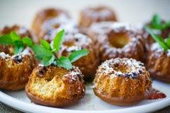 Honey cakes Royalty Free Stock Photo