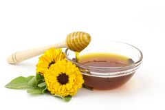 Honey and calendula flowers royalty free stock image