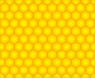 Honey cell background Stock Photography