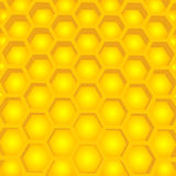 Honey cell structure vector illustration