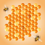 Honey cells Royalty Free Stock Images