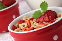 Honey cereals with strawberries Stock Photography