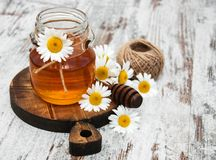 Honey And Chamomile photographie stock