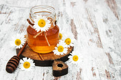 Honey And Chamomile image libre de droits