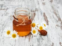 Honey And Chamomile images libres de droits