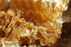 Honey  close-up Stock Photo