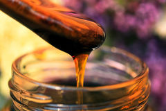 Honey close-up Royalty Free Stock Photos
