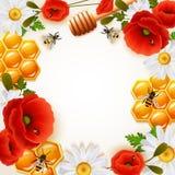 Honey Colored Background Stock Image