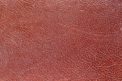 Honey colored leather texture. Stock Photography