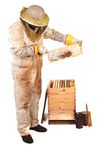 Honey and Comb. A beekeeper holding up a frame with honey and comb isolated Stock Images