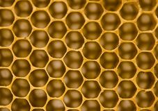 Honey comb. Honey is a sweet and viscous fluid produced by bees and other insects from the nectar of flowers. Honey is significantly sweeter than table sugar and Stock Photos
