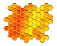 Honey comb. Abstract honey comb  background over white Royalty Free Stock Photography