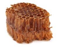 Honey Comb fotos de stock
