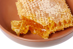 Free Honey Comb Stock Image - 34679481