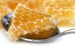 Honey Comb Imagen de archivo