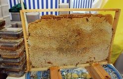 Honey Comb Imagen de archivo libre de regalías