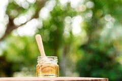 Honey Comb Foto de archivo libre de regalías