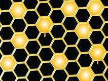 Honey comb background Stock Image
