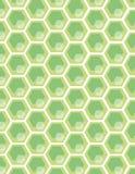 Honey comb background Stock Photos