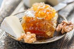 Honey comb, brie and walnuts. Stock Photography