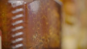 Honey comb close up. Closeup shot of colorful honey and comb stock video footage