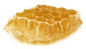Honey Comb com mel imagem de stock