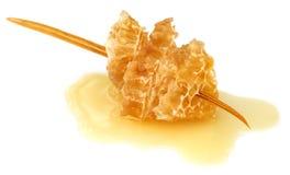 Honey Comb con la miel Fotos de archivo libres de regalías