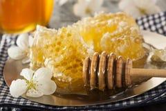 Honey Comb de oro crudo orgánico Fotos de archivo libres de regalías