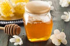 Honey Comb de oro crudo orgánico Fotografía de archivo libre de regalías