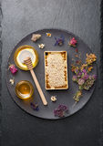 Honey comb and dried herbs Stock Images