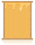 Honey comb in the frame vector illustration Stock Image