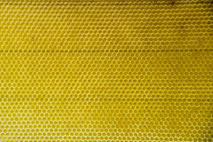 Honey comb gold background texture natural cell Royalty Free Stock Photography