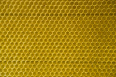 Honey comb gold background texture natural cell 2 Royalty Free Stock Images