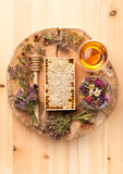 Honey comb, herbal tea and herbs Stock Images