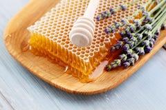 Honey comb Stock Photo