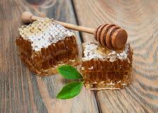 Honey comb Stock Image