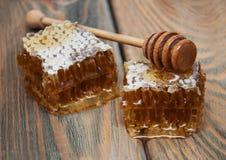 Honey comb Stock Photography