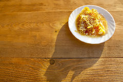 Honey comb on a white saucer Stock Image