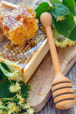 Honey comb and a wooden spoon. Royalty Free Stock Photography