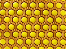 Honey comb Royalty Free Stock Image