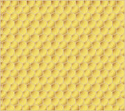 Honey combs. Honeycomb yellow background, vector illustration Stock Images