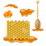 Honey Combs dolce royalty illustrazione gratis