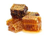 Honey combs Stock Photo