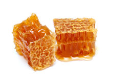 Honey combs Stock Image