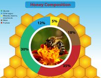 Honey composition Royalty Free Stock Photo