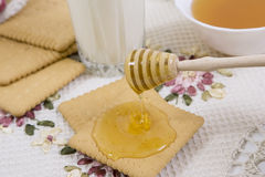 Honey and cookies. Close up view of honey dipper with honey dripping Royalty Free Stock Image