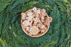 Honey cookies on pine tree twigs background . Stock Photos