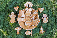 Honey cookies on pine tree twigs background . Stock Images
