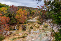Honey Creek Royalty Free Stock Photos