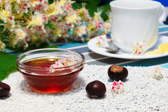 Honey, cup of tea, and fruits of chestnut. Glass bowl with chestnut honey and a cup of tea.on the background of blossoming chestnut branches Royalty Free Stock Photos